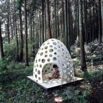 jajko w lesie