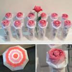 rosella umbrella