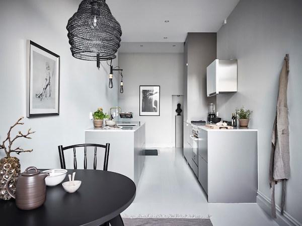swedish grey13